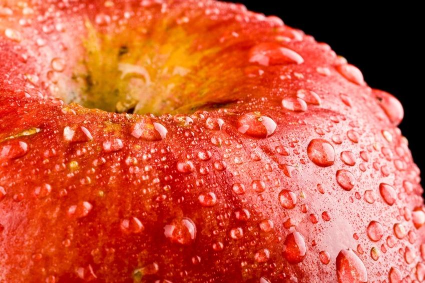 La Sana Alimentazione Rivistainforma It Rivista Sul Benessere E Salute