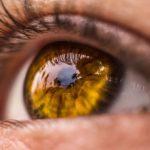 La vista conta